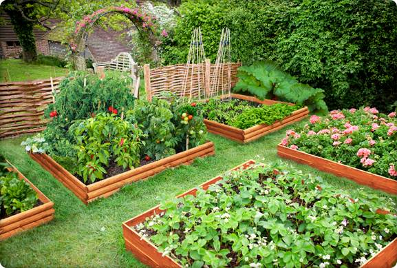 the benefits of companion gardening free gardening