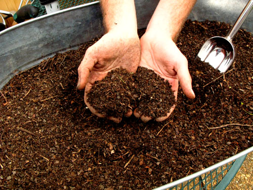 black-gold-sifted-compost