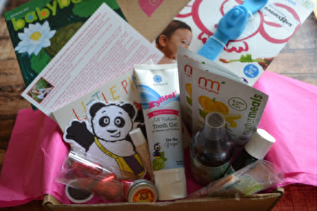 Jan Ecocentric Mom Box 1