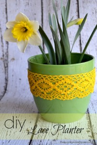 Dollar_Tree_Lace_planter_ad (8 of 1)