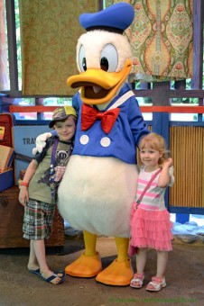 disney-donald-duck (1 of 1)
