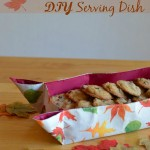 dollartree-diy-homemade-serving-dish-ad (2 of 6)