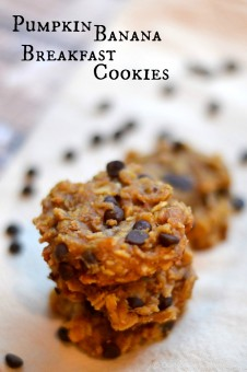 pumpkin-chocolate-chip-breakfast-cookie-recipes (2 of 1)